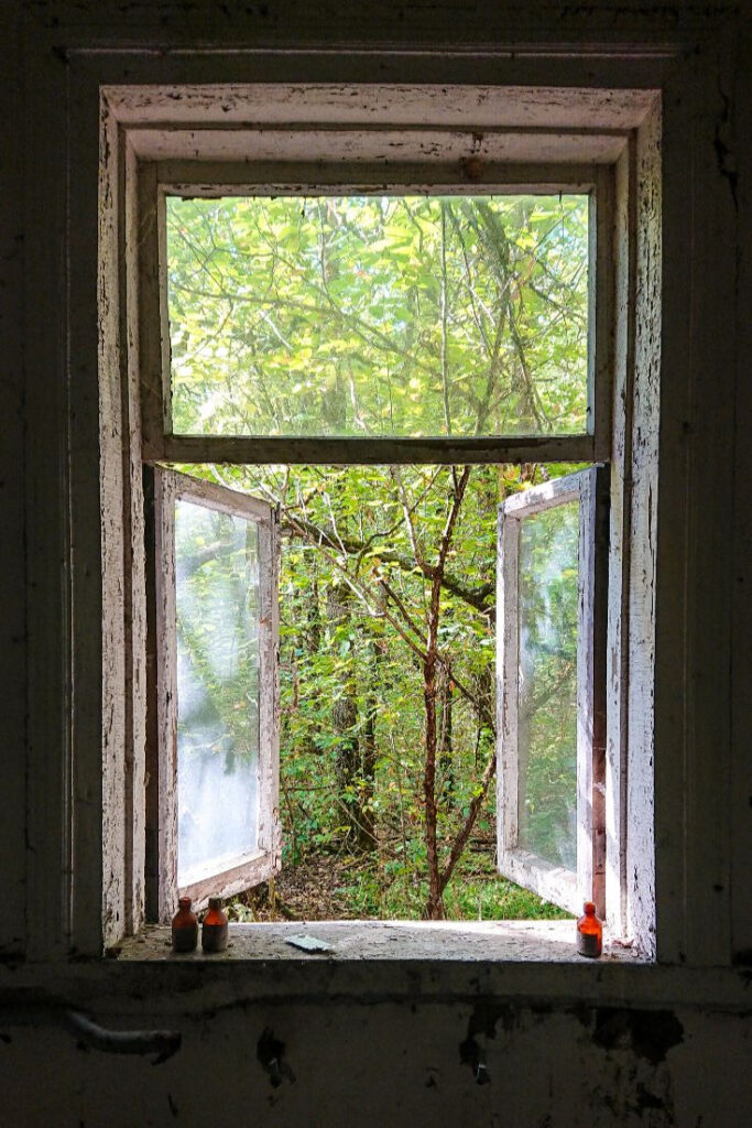 Zalissya Chernobyl window