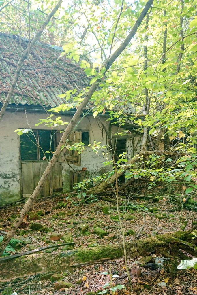 Zalissya house outside